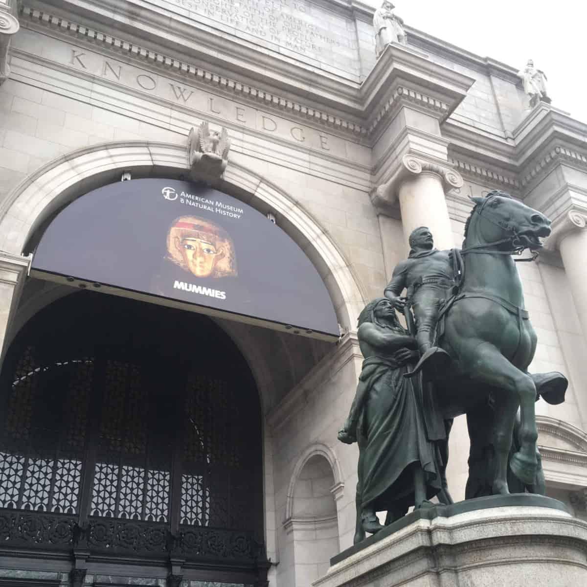 Un giorno al museo: l'American Museum of Natural History