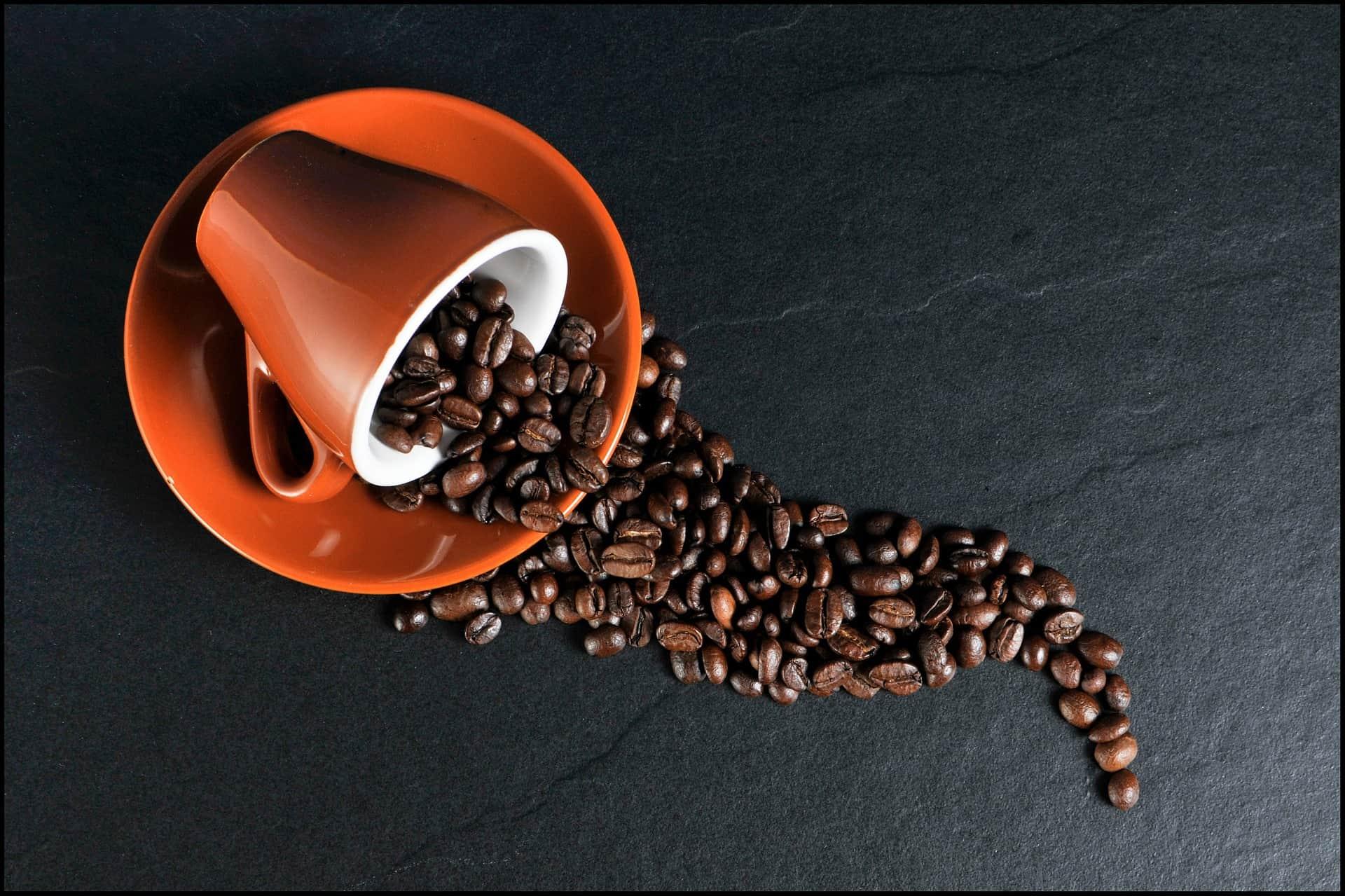 L'aroma del caffè in una tazzina del museo Lavazza