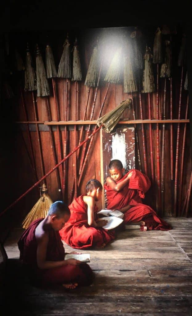Bambini monaci che stanno leggendo di Steve McCurry
